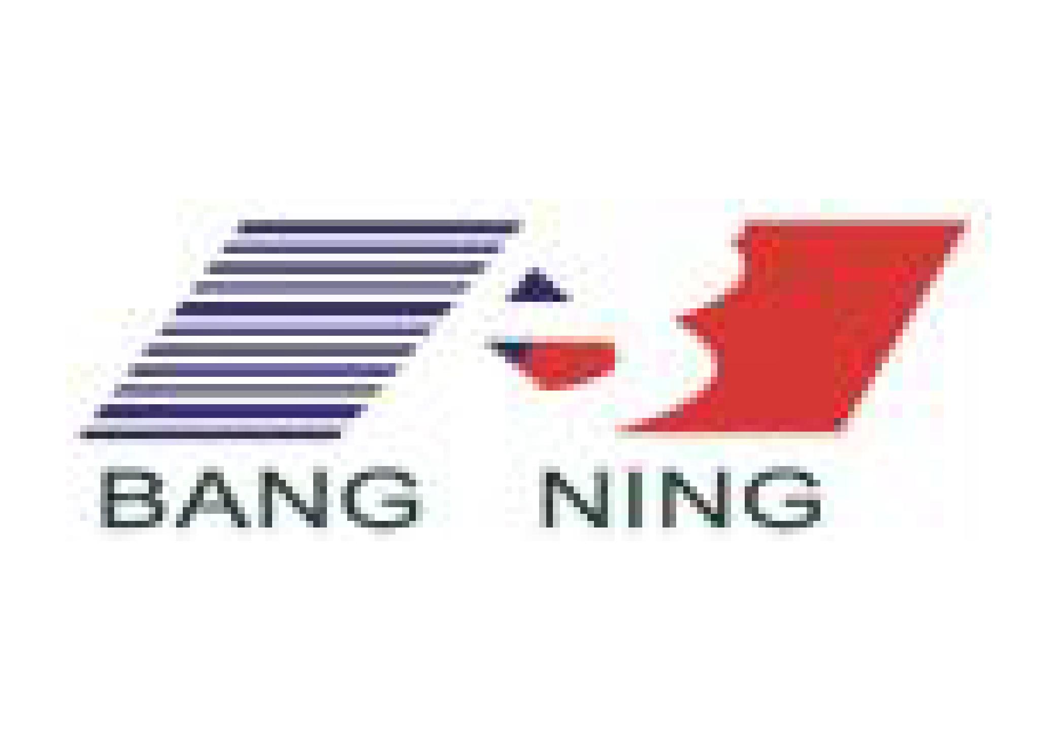 Jiangsu Bangning Science & Technology Co., Ltd